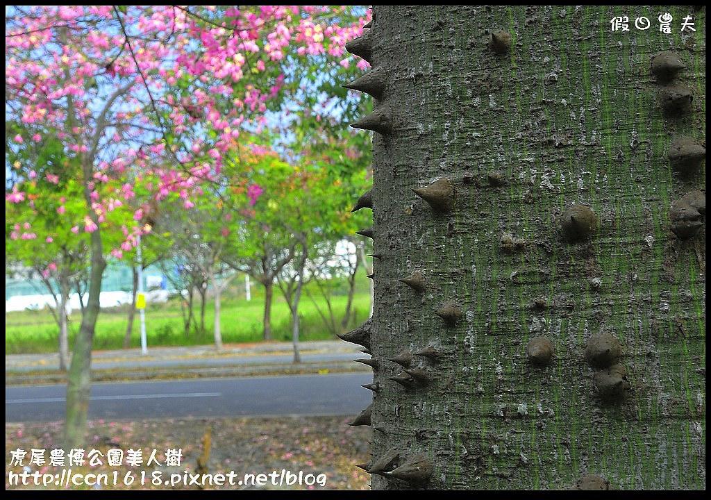 虎尾農博公園美人樹_DSC7509