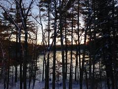 Foster Pond sunset
