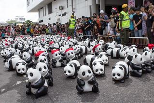 1600_Panda_Jalan_Lintang_Penang_02