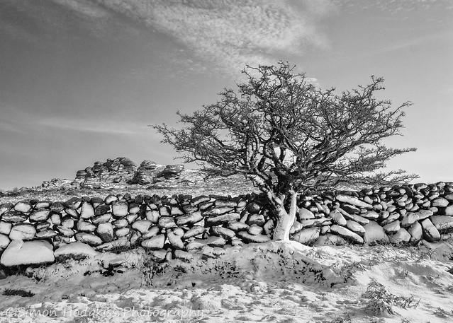Simon Hodgkiss Photography - Snow, Dartmoor