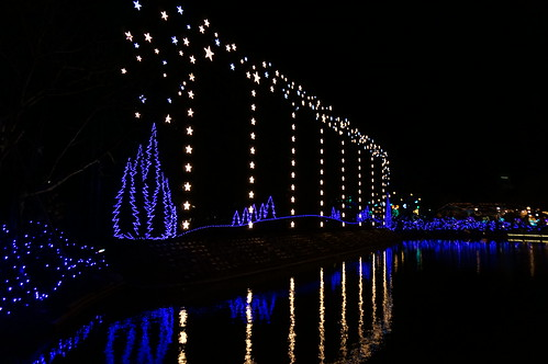 Flower Fantasy 2015 illumination at Ashikaga Flower Park 22