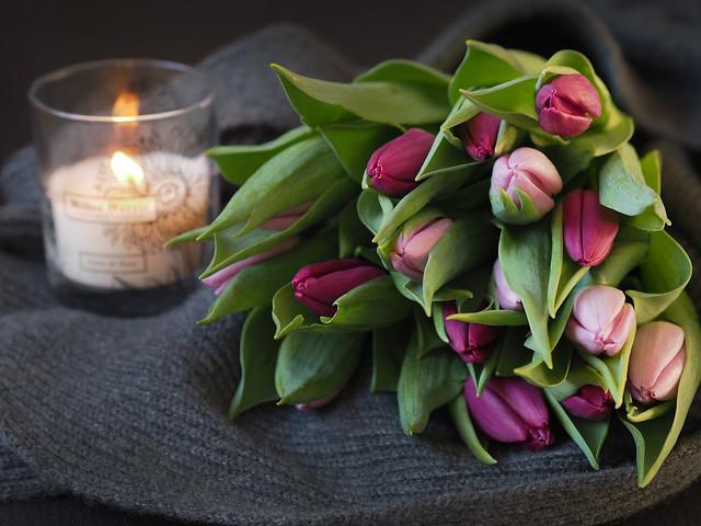 flowerscandlecashmere2
