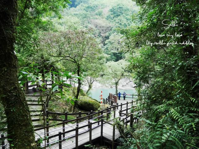 烏來景點內洞森林遊樂區 (14)