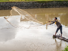 water, reflection, fisherman,