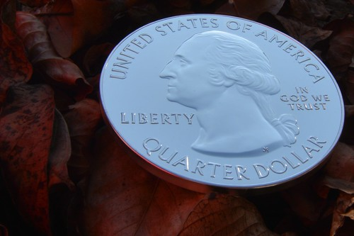 Quarter in the leaves