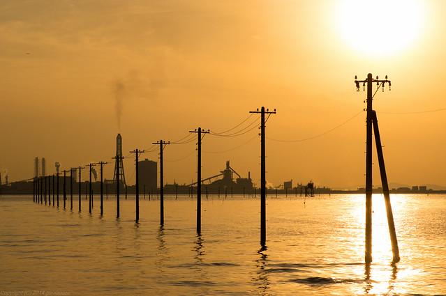 utility poles row