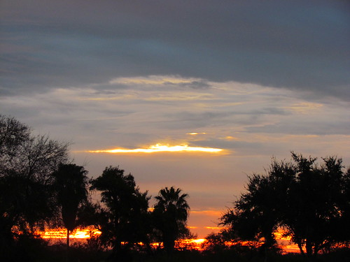 trees sky water beauty clouds sunrise texas riverbend