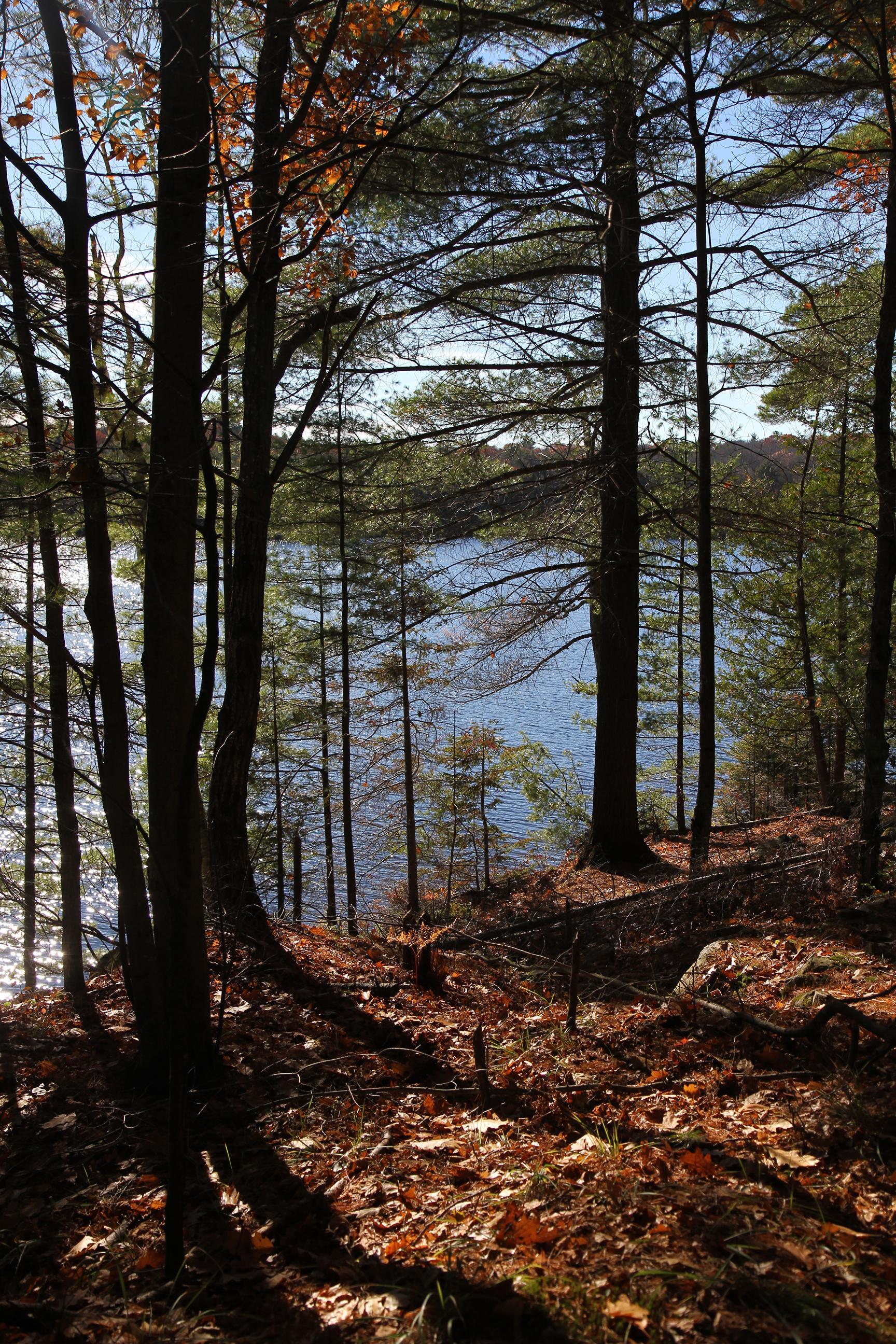 Silent lake 16