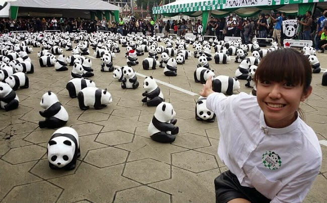 1600 pandas in Malaysia MYFM Wayne