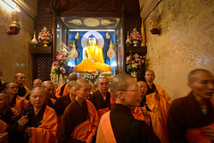 The Hero's Journey — In Buddha's Footsteps