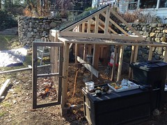 coop renovation IMG_2643