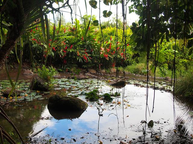 Vaipahi Gardens, Tahiti