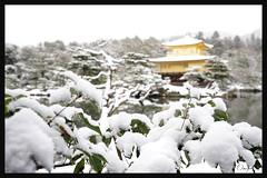 日本京都-金閣寺-雪.44