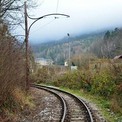 Reichenau 23.11.2014