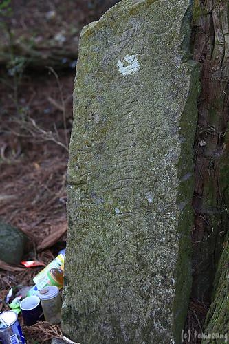 Takamoriden no Sugi (cedar tree of Takamori palace)