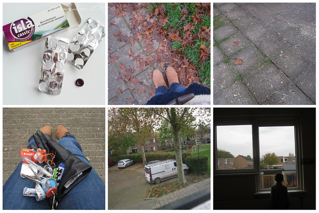 Snapshot November