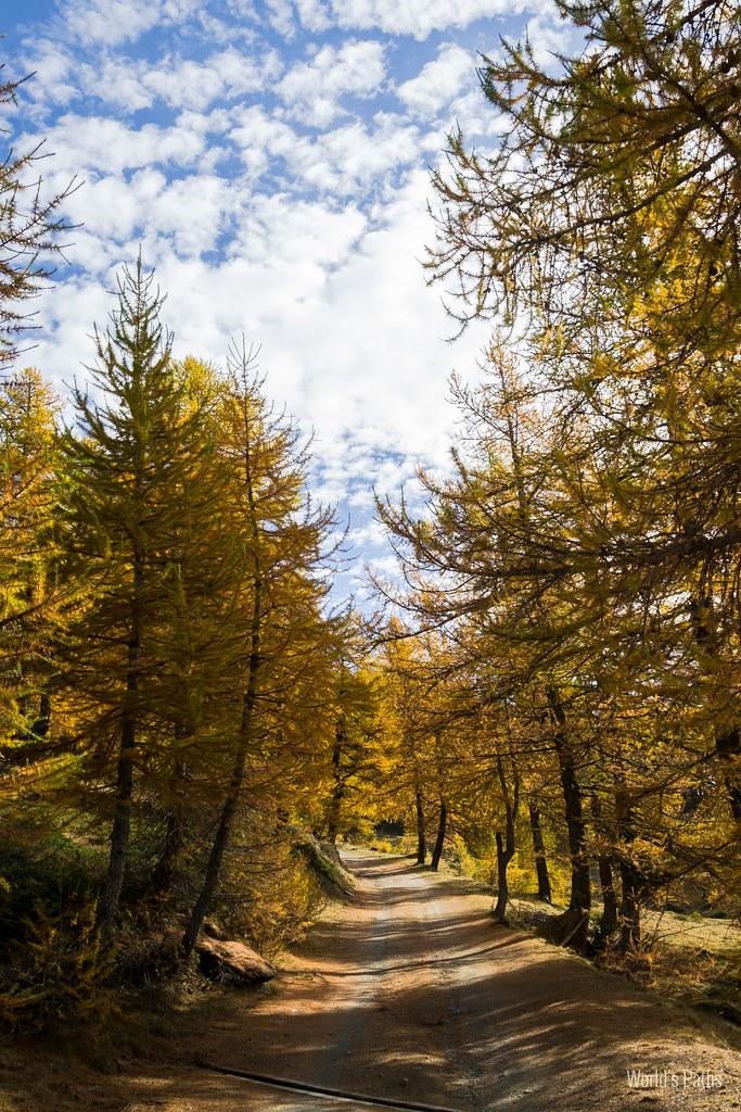 autunno verso il rifugio selleries