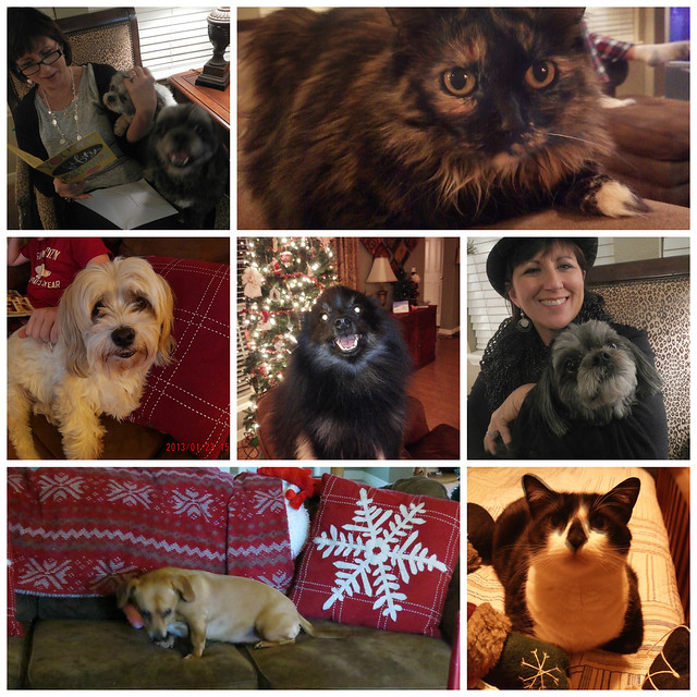 Christmas Critter Collage 2014 2