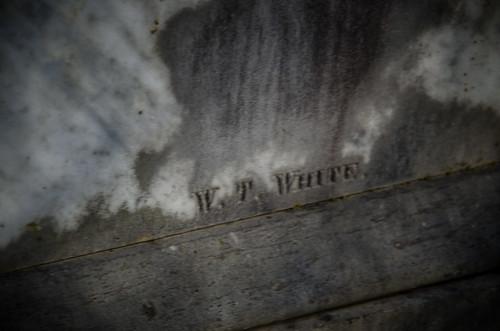 W T White-001