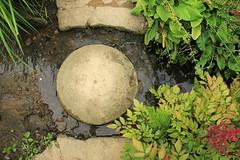 Hidcote Manor Garden (NT) 10-08-2013