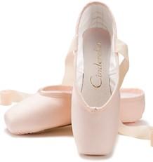Chacott Cinderella