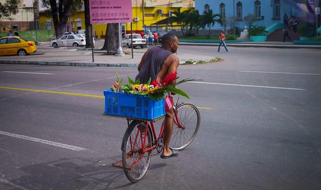 Cuba. Bus Window Shot (14)
