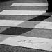 304 - 365 | Sombras que cruzan