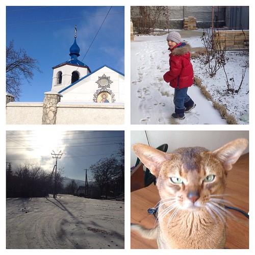 """Год стартовал, и вот вам яркое крымское солнце, сытый кот и Петя в роли """"мальчик Новый Год"""", помните такой старый персонаж в красной курточке, он присутствовал на всех торжествах вместе с Дедом Морозом и Снегурочкой))) Снег в Крыму - радостное событие для"""