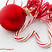 25 days of Christmas - Day 7 by Karin Pinkham Photography