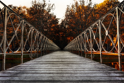 bridge into darkness