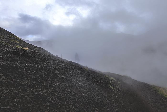 Iceland_Spiegeleule_August2014 045
