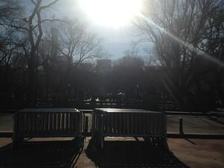 Central Park: An Avenue