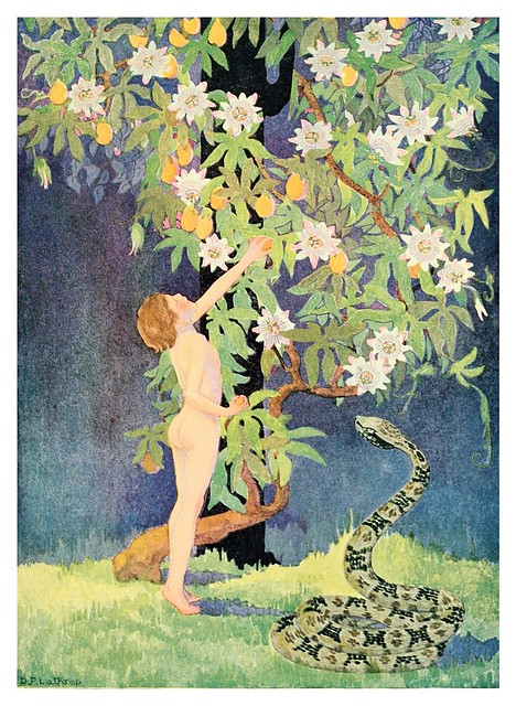 013-A little boy lost (c1920) - Ilustrado por Dorothy P. Lathrop