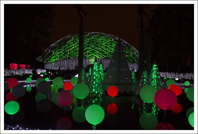 Garden Glow 2014-12-02 19