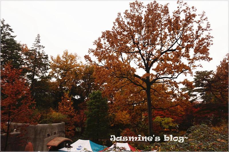 DSC01896_副本
