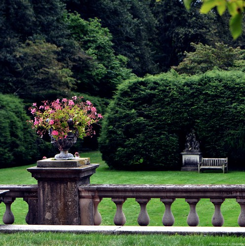 Westbury Gardens - In Explore - Thank you for all the support!