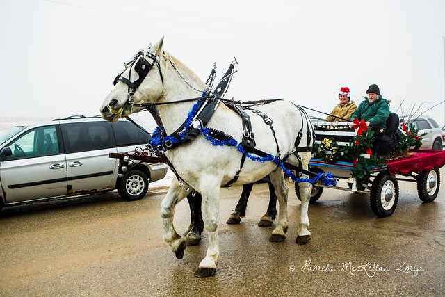 20141213-HolsteinChristmasParade-WM-26