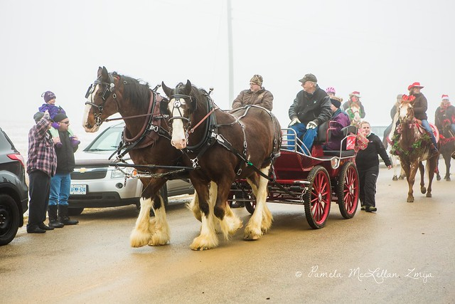 20141213-HolsteinChristmasParade-WM-4