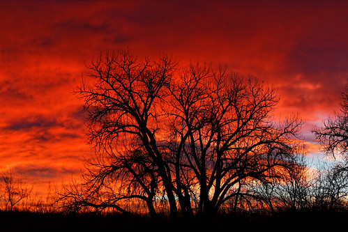 red urban usa nature clouds sunrise twilight colorado urbannature handheld dxo allrightsreserved cherrycreekstatepark ef70200mmf4lis canon5dmkiii copytright2015davidcstephens dxoopticspro1011 z5a4937dxosrgb