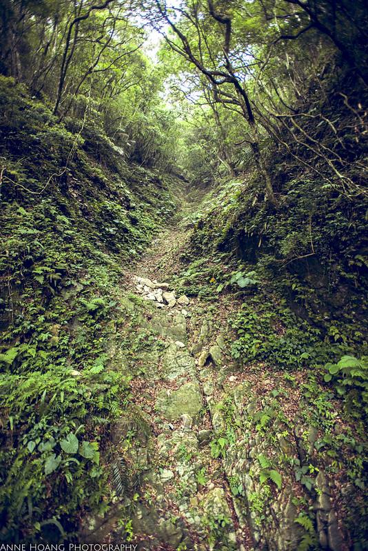 Zhuilu old trail in Taiwan