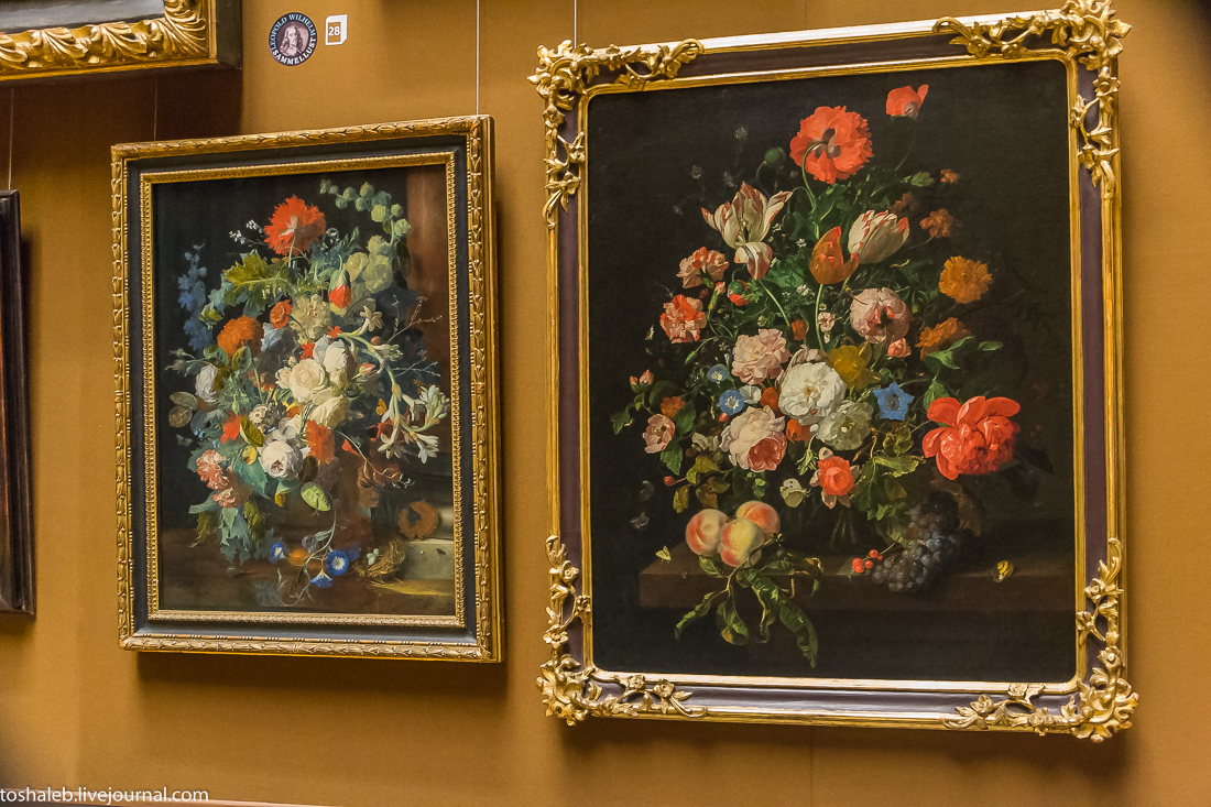 Вена_музей-138