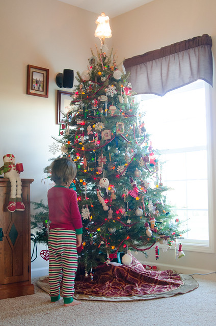 20141207-Decorating-the-Christmas-Tree-5811