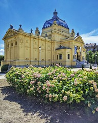 Padiglione d Arte #art #pavilion #zagreb #zagabria #hrvatska #architecture #flowers #landscape