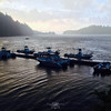 Morning at the Langara Island Lodge docks