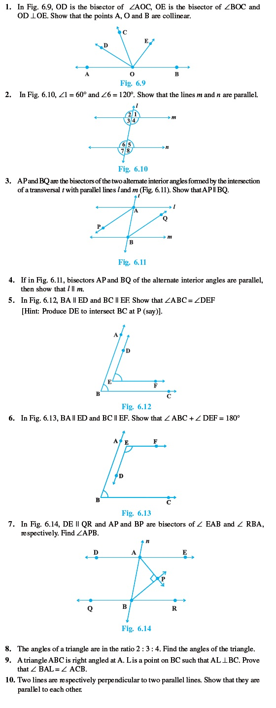 Class 9 Important Questions for Maths – Lines and Angles | AglaSem ...