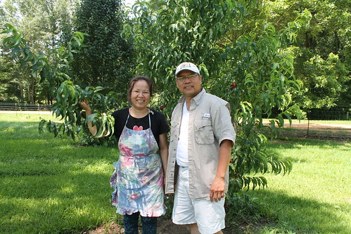 Nancy and Hung Pham stand in front of one of their many fruit trees with branches so full they almost hit the ground. NRCS photo by Judi Craddock.