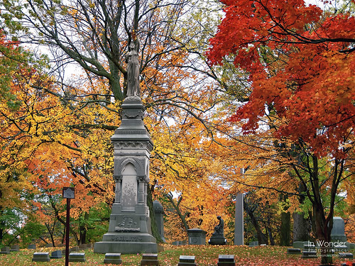 autumn red cemetery graveyard leaves wisconsin landscape gold nikon tombstone milwaukee foresthomecemetery markadsit