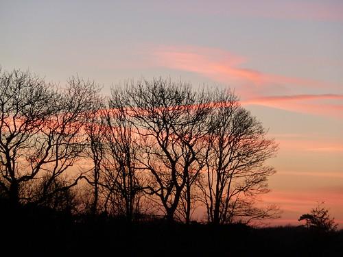 December Sunset (Berwick to Birling)