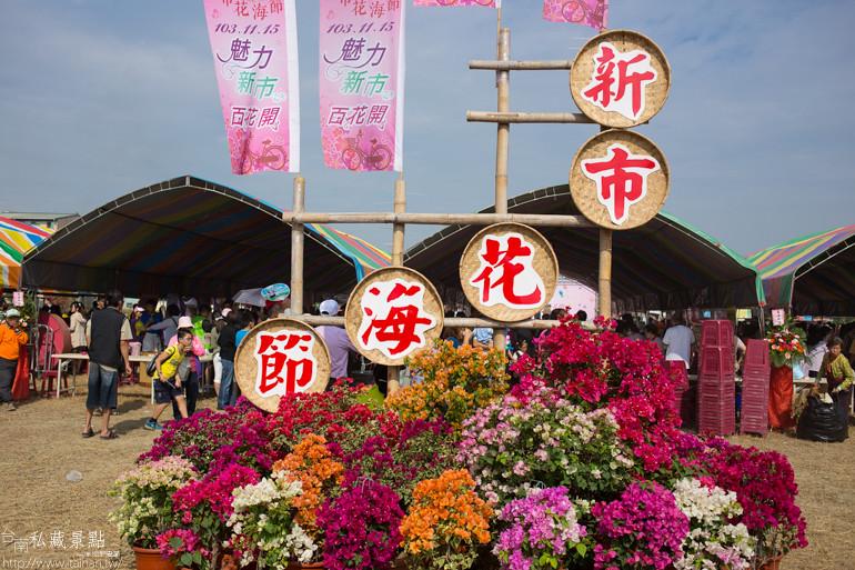 台南私藏景點-新市花海節 (1)