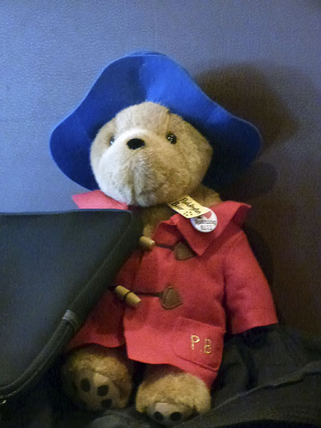 welcome paddington